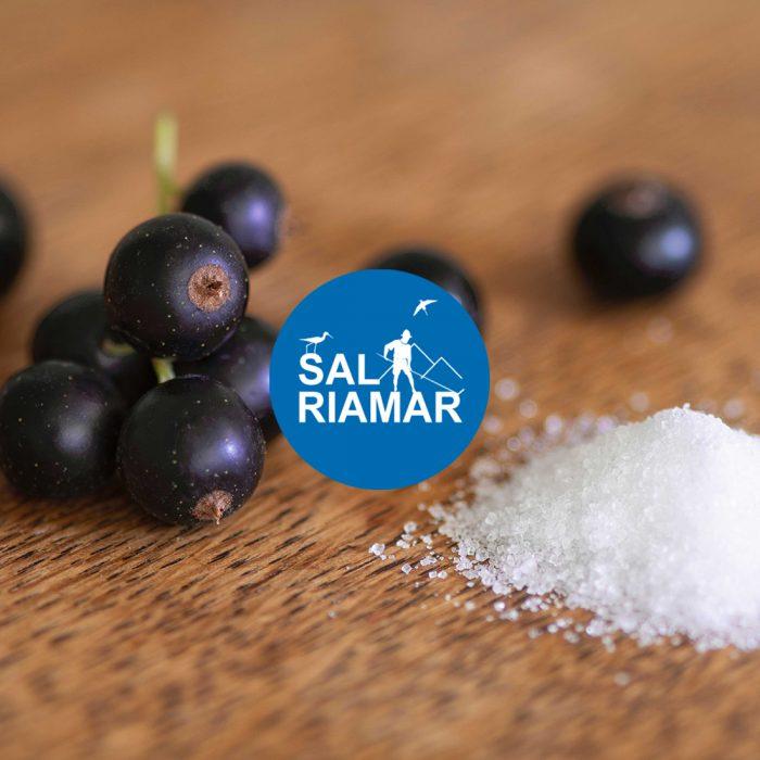 Website WordPress Sal Riamar