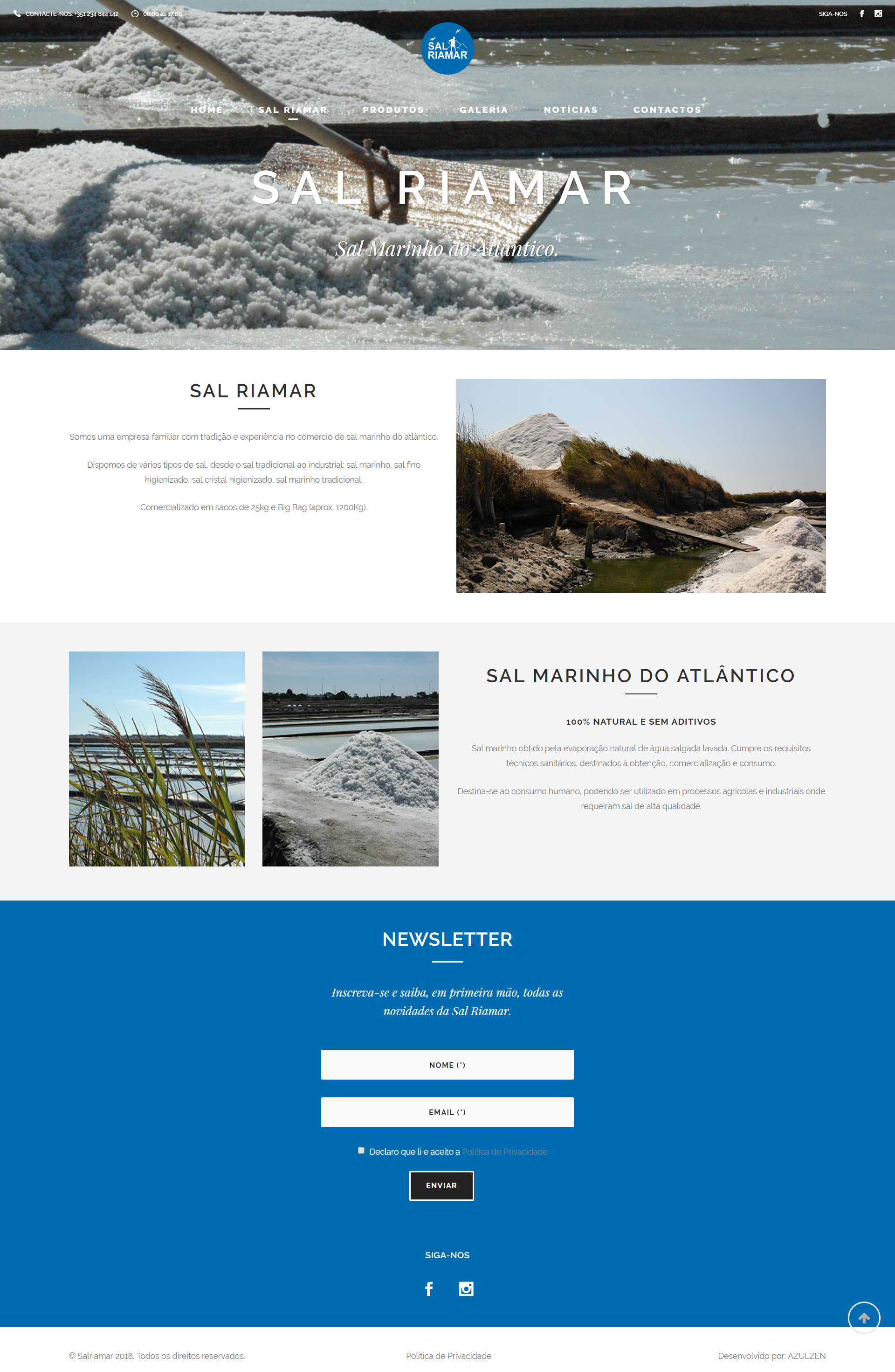 Website WordPress Sal Riamar