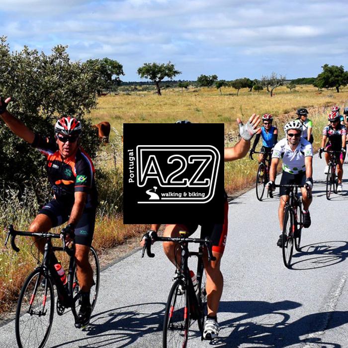 Gestão de campanhas Google Ads - A2Z